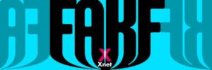 Xnet contesta a la Consulta de la Relatora Especial de la ONU sobre libertad de expresión con la propuesta que defiende en #FakeYou