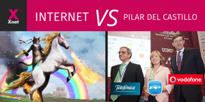 Internet VS Pilar del Castillo and the Spanish government